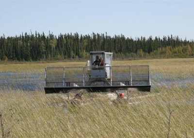 Coming into the bagging station. Father and son our picking wild rice.